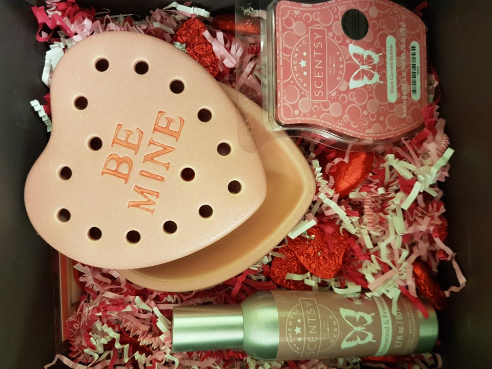 Scentsy Valentine's Day Package